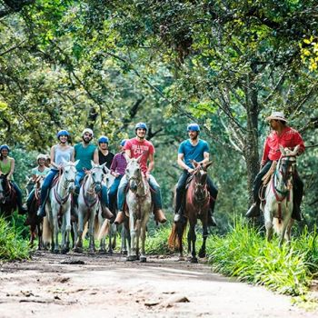 Horseback Riding to the Rincon de la Vieja National Park, Oropendula Waterfall & Rio Negro Hot Springs
