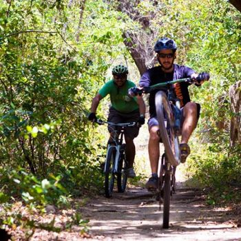 Tropical Trails Mountain Bike Tour